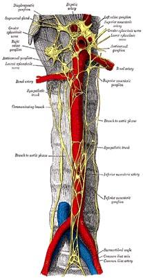 Láser las operaciones de la desaparición de la hernia intervertebral